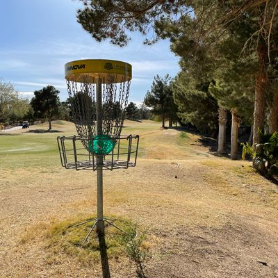 Let this ball golfers putt before you bang those chains