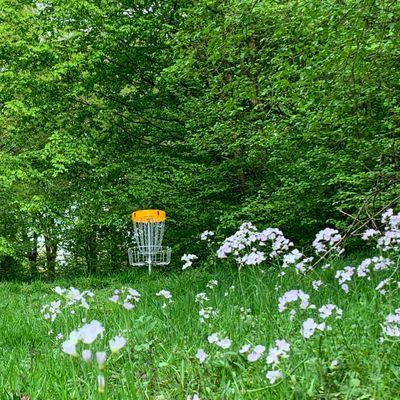 Frühling im Derletal 🙂