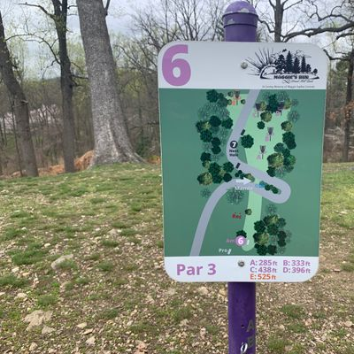 6 purple/short tee map