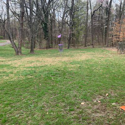 6 purple/short basket.