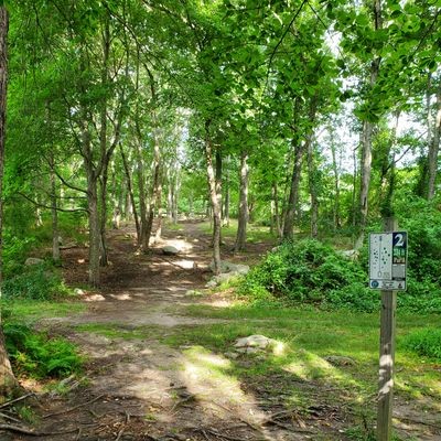 Hole 2 has a significant elevation increase.