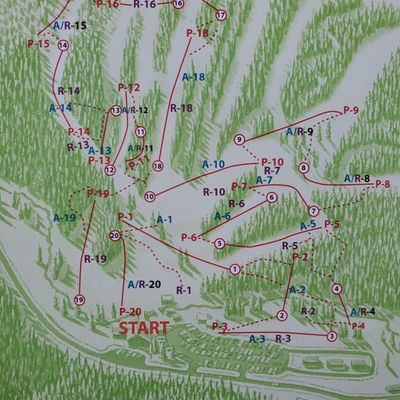 Map of the course.