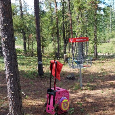 Reverse back up the fairway on hole 1.🌲🌲🌲🌲