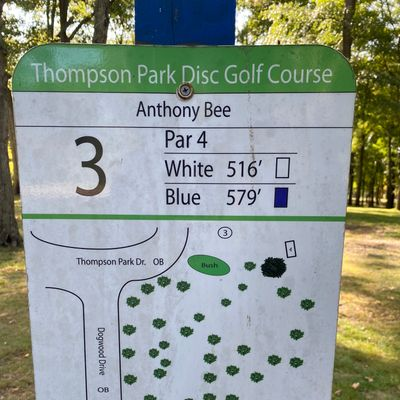 Map of Hole 3