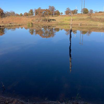 Pond over hole 15 blue.