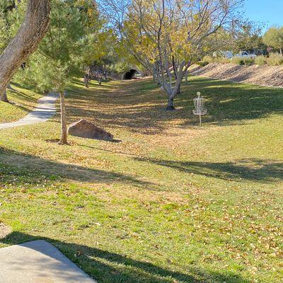 Falling leaves on Hole 13