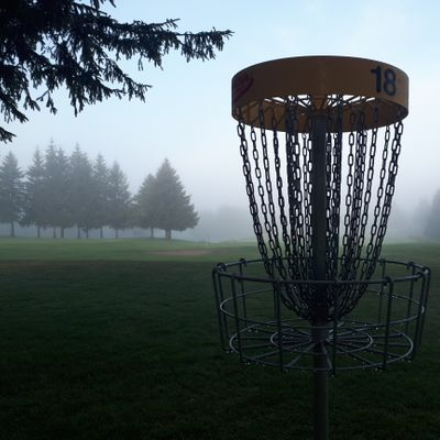 Hole 18 basket on the white course, in some heavy morning fog that's just starting to lift.
