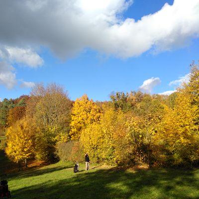 Herbst in Gössweinstein