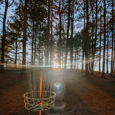 Hole 5 basket