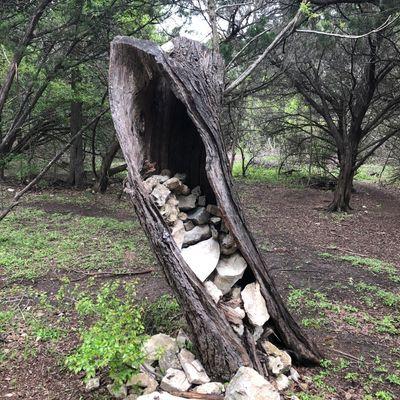 Rock tree on 18.