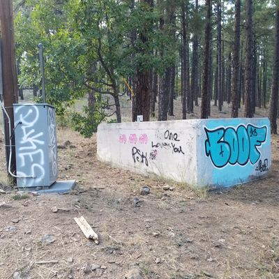 Graffiti on the 12th hole. Visible from the parking lot. So sad I hope the city cleans it  up.
