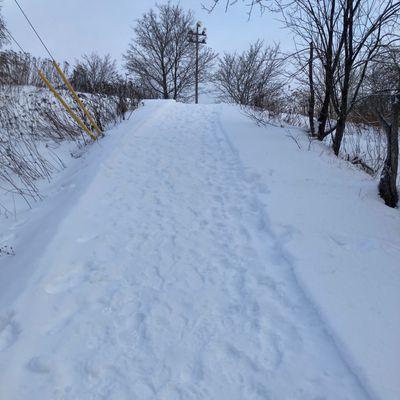Nice pathway!!!