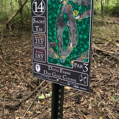 Map for Short Tee 14
