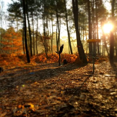 Hole 10 sunny morning