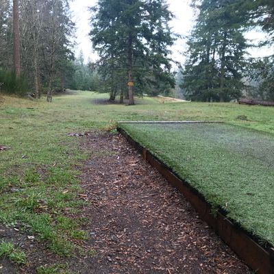 Hole 2 red pad