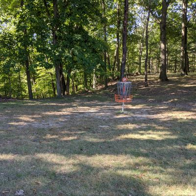 Hole 7 Basket