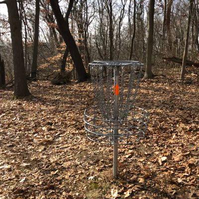 Hole 2 Basket