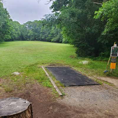 One of the open shots on hole 2. There are a few open holes scattered through the course.
