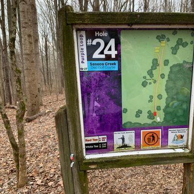 Hole 24 map