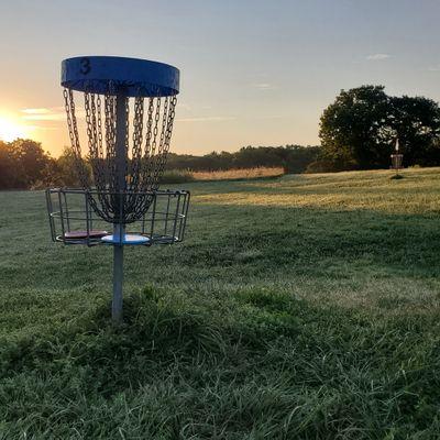 Basket 3, welcoming the sun.