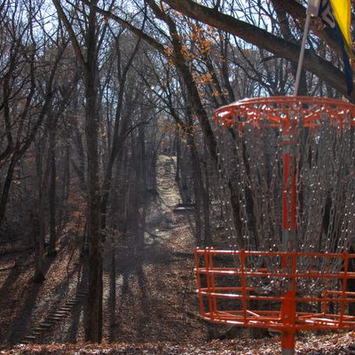 Hole 11 basket. Tee pads in the distance
