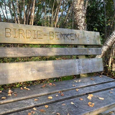 The birdie bench on tee #8