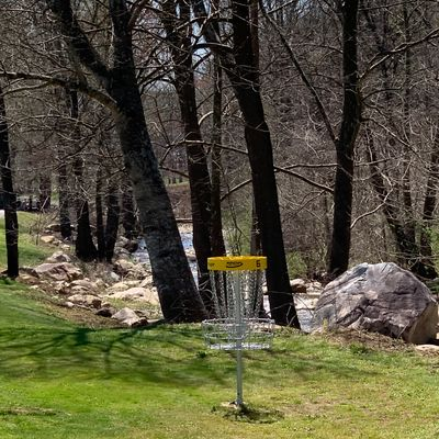 Hole 6 target next to the Catawba River