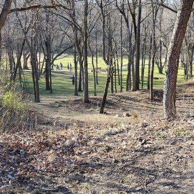 Cool hole, down a ravine through the trees