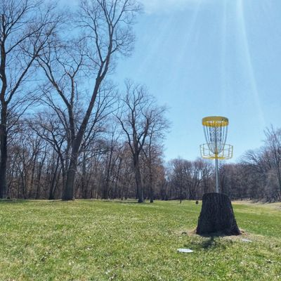 The disc golf gods approve this course 👍🏽