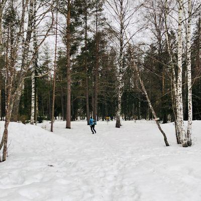 28.03.21 Hull 7. Mindre snø i skogen. Ingen bare teepads.
