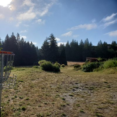Basket on the pitch & putt course