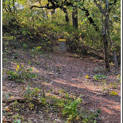 #3 basket up on the hillside