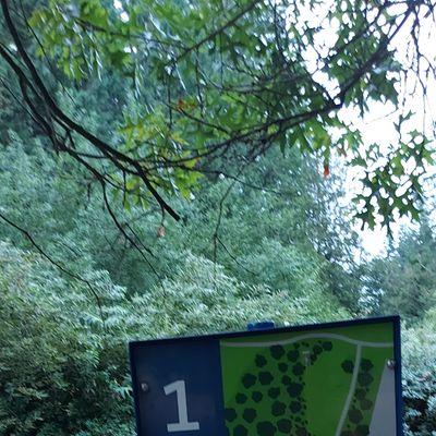 Hole sign #1 🍁🍃🍁🍃