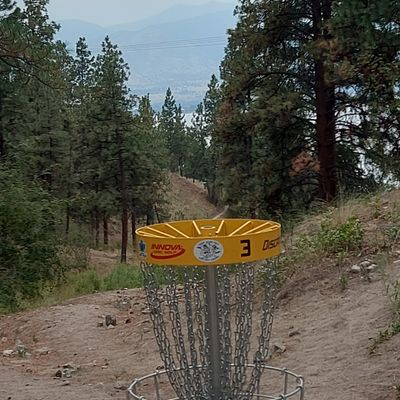 Reverse back up the fairway on hole 3.👌🌲🌲👍