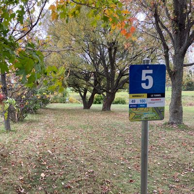 Départ #5, panier en ligne droite avant le ruisseau